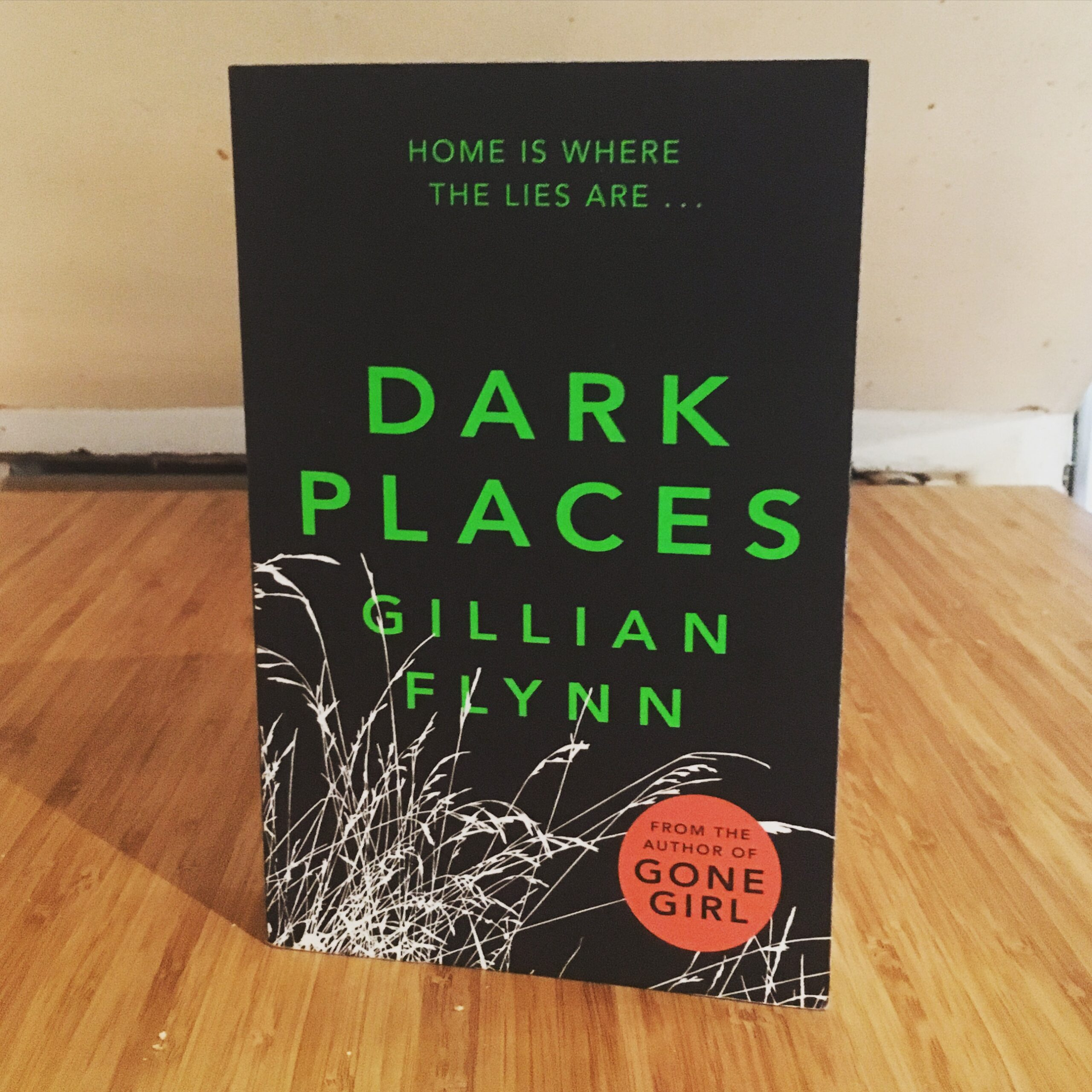 Dark Places, Book 14, 2016 Reading Challenge